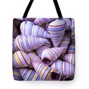 Spiral Sea Shells Tote Bag