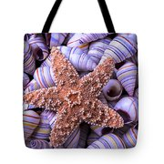 Spiral Shells And Starfish Tote Bag