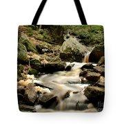 Spirit Falls - 1 Tote Bag