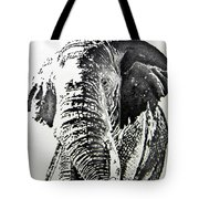 Spirit Of The Serengeti Tote Bag