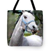 Spirited Grey Horse Tote Bag