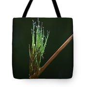 Spiritualism In Nature... Tote Bag