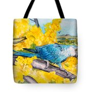 Spix's Macaw - A Dream Of Home Tote Bag