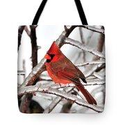 Splash Of Red Tote Bag