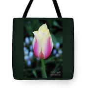 Splendid Tote Bag