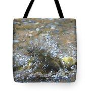 Splish Splash Bird Bath Tote Bag