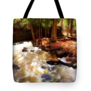 Split Rock River Tote Bag