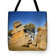 Split Rocks With Woman Tote Bag