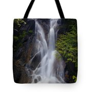 Split Top Falls Tote Bag