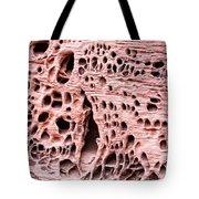 Sponge Rock Tote Bag