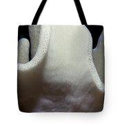 Sponges 3 Tote Bag