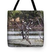 Spoonbill Gathering Tote Bag