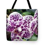 Spot On Beauty Tote Bag