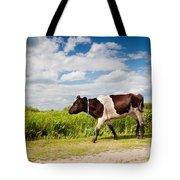Calf Walking In Natural Landscape  Tote Bag
