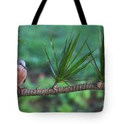 Spotted Dove Tote Bag
