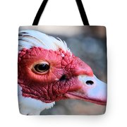 Spotted Feathers Tote Bag