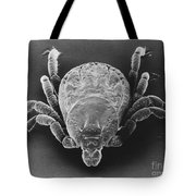 Spotted Fever Tick Tote Bag