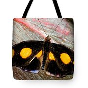 Spotted Grecian Shoemaker Butterfly Tote Bag