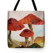 Spotted Mushrooms Tote Bag