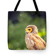 Spotted Owl Tote Bag