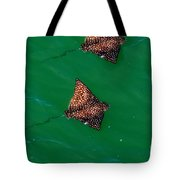Spotted Rays  Tote Bag