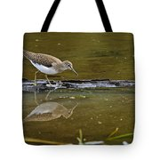 Spotted Sandpiper Pictures 61 Tote Bag