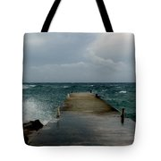 Spotts Landing Tote Bag