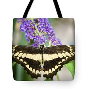 Spread Your Wings My Little Butterfly  Tote Bag