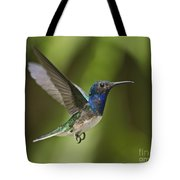 Spread Your Wings... Tote Bag