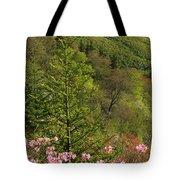 Spring Along The Blue Ridge Tote Bag