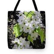 Spring Apple Blossoms Tote Bag