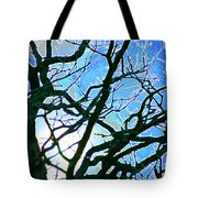 Spring Approaches Tote Bag