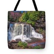 Spring At Blackwater Falls Tote Bag