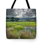 Spring At Dry Lagoon 1 Tote Bag