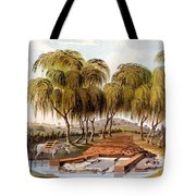 Spring At The Source Of The Skamander Tote Bag