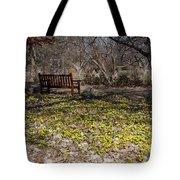 Spring Beal Tote Bag