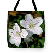 Spring Beauty Wildflowers - Claytonia Virginica Tote Bag