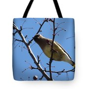 Spring Bird And Berries Tote Bag