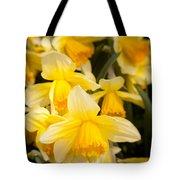 Spring Blooms 6739 Tote Bag
