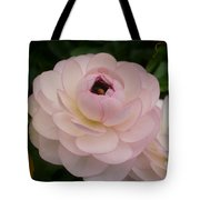 Spring Blooms Of 2013 A  Tote Bag