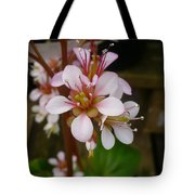 Spring Blooms Of 2013 D Tote Bag