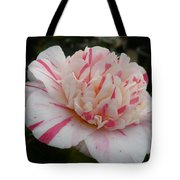 Spring Blooms Of 2013 G Tote Bag