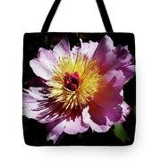 Spring Blossom 12 Tote Bag