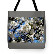 Spring Blossoms, Baltimore Tote Bag