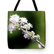 Spring Blossoms White 031015aa Tote Bag