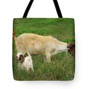 Spring Born Tote Bag