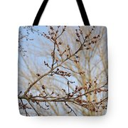 Spring Bound Tote Bag