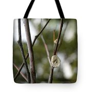 Spring Branches 1 Tote Bag