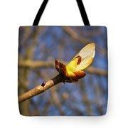 Spring Bud Tote Bag