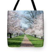 Spring Cherry Trees Tote Bag